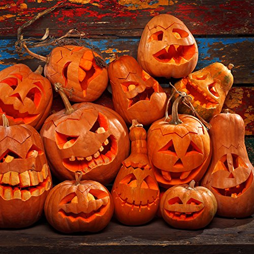 Halloween Haunters Ultimate 12 Piece Professional Pumpkin Carving Tool Kit - Easily Carve Sculpt Halloween Jack-O-Lanterns - 18 Cuts, Scoops, Scrapers, Saws, Loops