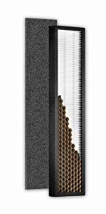 Hoover Air Purifier Filters, AH60015