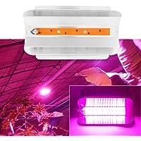 Delaman Grow Light Plantas de Interior COB LED