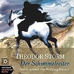 Der Schimmelreiter   Theodor Storm