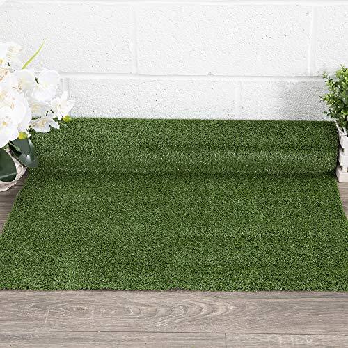 Evergreen Collection Indoor/outdoor Green Artificial Grass