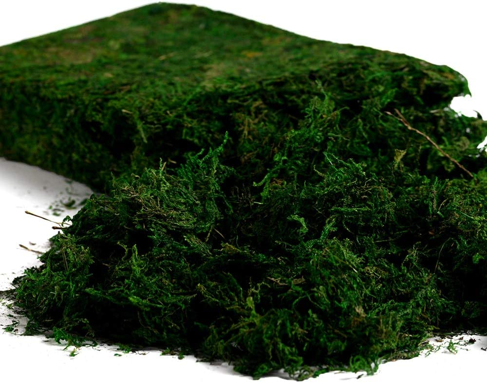 Farmoo Artificial Moss for Plant, Fairy Garden Lawn Crafts Wedding Decor (Fresh Green Moss)