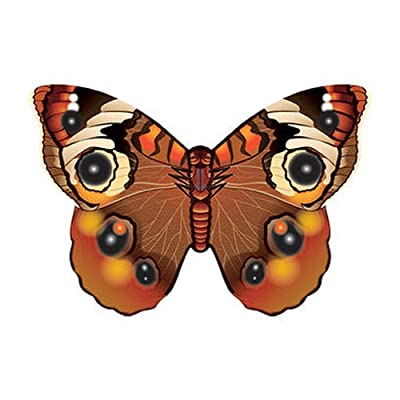"WindNSun Microkite Mini Mylar Butterfly 4.7"" Buckeye Kite: Toys & Games"