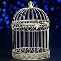 Shindigz Decorative Black Bird Cage Centerpiece