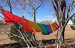 Tibetan Buddha Eyes, Om Mani Padme Hum prayer flags. Flags have a quote from the Dalai Lama.