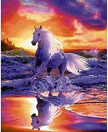 Amazon Com Diy 5d Diamond Painting By Number Kits Crystal Rhinestone Diamond Embroidery Paintings Pictures Arts Craft For Home Wall Decor Full Drill Seaside Running Horse 12x18 Inch