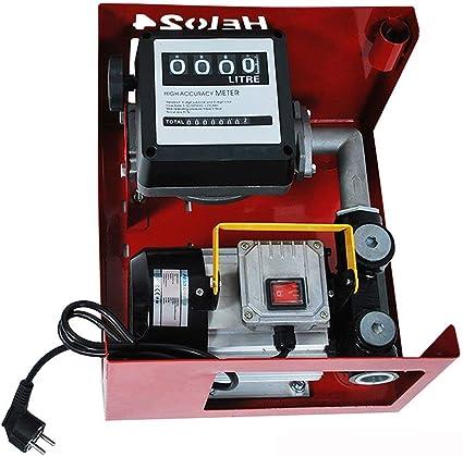 h Pompa gasolio DP60L pompa olio con contatore automatico ugello carburante pompa gasolio autoadescante 3600L