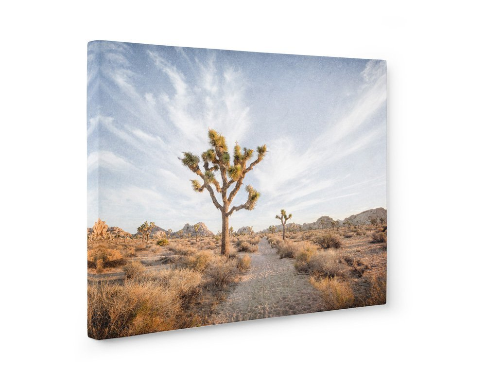 Large Format Print, Canvas or Unframed, Southwest Wall Art, Joshua Tree Photography, California Desert Decor, Palm Springs Landscape Art, Path to Joshua' Path to Joshua'
