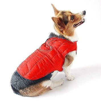 OIZEN Chaqueta Impermeable para Mascotas Perros Reversible del Abrigos, Calentar del Abrigo pour Primavera,