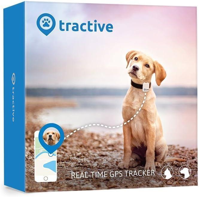 Tractive GPS-Tracker - Localizzatore GPS per cani e gatti. Il dispositivo leggero e impermeabile per ogni collare
