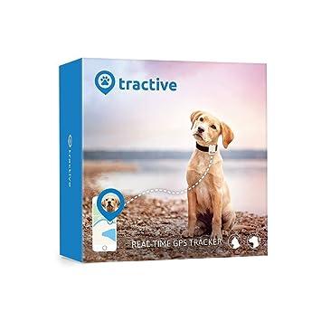 b7b89e351cc0d Rastreador Tractive GPS para perros y gatos - resistente al agua se ajusta  al collar, color blanco  Amazon.es  Productos para mascotas