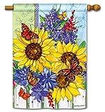 Butterflies and Blossoms House Flag – 28″ x 40″ – BreezeArt