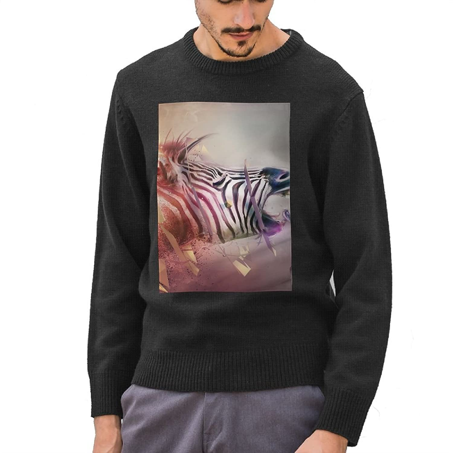 durable service Men s Zebra Head colorful Explosion Fantasy DIY Customized  Pattern Funny Long Sleeve Sweater Jumpers 7e432152c