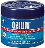 Ozium 804282 Outdoor Essence Scent Gel - 4.5 oz.