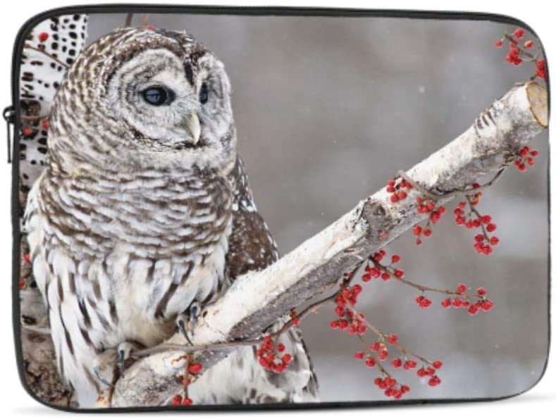 Designed to Fit Any Laptop//Notebook//ultrabook//MacBook with Display Size 11.6 Inches Barred Owl Perched Birch Tree Surrounded Pattern Neoprene Sleeve Pouch Case Bag for 11.6 Inch Laptop Computer