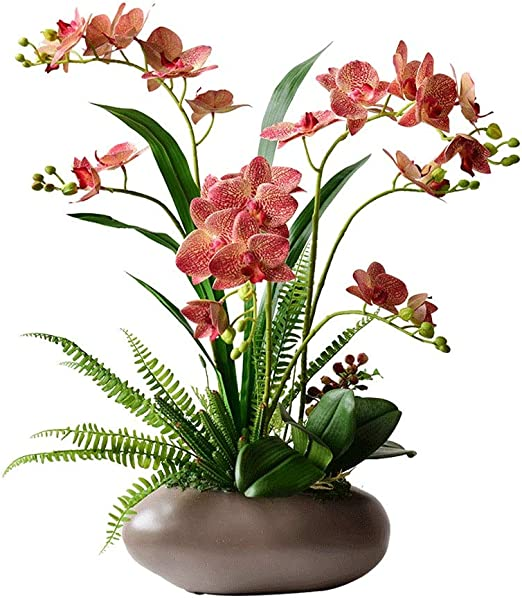 Hogar & Jardín Flores artificiales moderna Phalaenopsis artificial florero de cerámica Set, Falso flor artificial de los bonsais, Swing Home Hotel decoración floral Bonsai Artificial / Bonsai de Flore: Amazon.es: Hogar