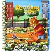 Reading Street Common Core 2013 Teachers Edition Second Grade 2.1