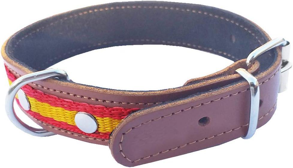 Tiendas LGP - Collar para Perros de Piel Flor con Bandera de España, 2,5 x 43 cm, Color Cuero: Amazon.es: Productos para mascotas