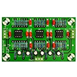 Electronics-Salon A-300 Stereo Phono RIAA Preamplifier Preamp Module (For MM Pickup)