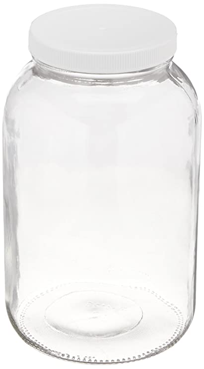 Cookie Jars For Sale Online Magnificent Amazon 60gallon USDA Fermentation Glass Jar Canning Jars