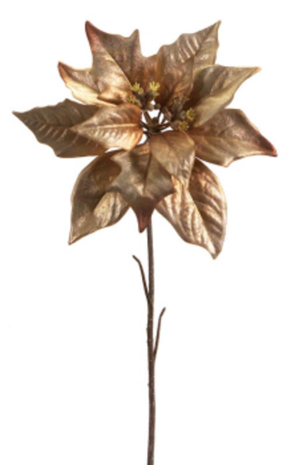 Champagne Copper Poinsettias Pack of 6