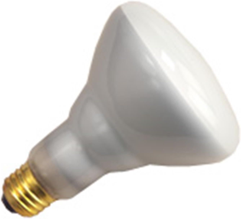 Halco 65W BR40 FL 130V 5M Prism BR40FL65//P5 65w 130v Incandescent Flood Prism Long Life Plus Lamp Bulb 6 Qty