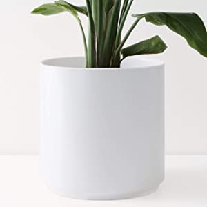 """Peach & Pebble 12"""" Ceramic Planter (15"""", 12"""", 10"""", 8"""" or 7"""") - Large White Plant Pot, Hand Glazed Indoor Flower Pot for All Indoor Plants (White, Black, Melon or Gold) - White, 12 inch"""