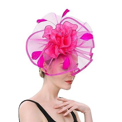 HFJ&YIE&H Fascinadores Sombrero para Mujeres,Té Sombreros de ...