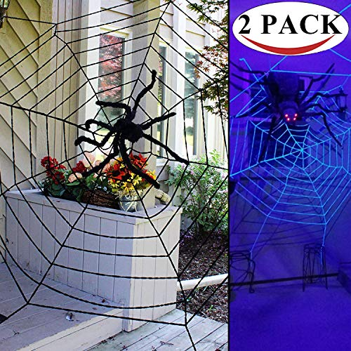 Great spider web decoration