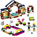 LEGO Friends Snow Resort Ice Rink 41322 Building Kit (307 Piece)