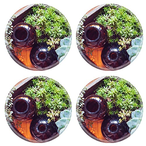 msd-round-coasters-image-29796548-house-plants-green-succulents-old-wooden-box-and-brown-vintage-gla
