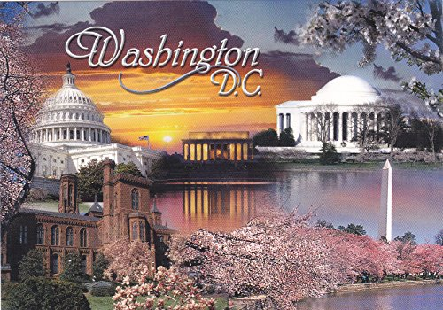 DC040WASH - WASHINGTON D.C., THE NATIONAL CHERRY BLOSSOM FESTIVAL, A WASHINGTON, D.C. TRADITION. - A U.S. State POSTCARD .. from ()