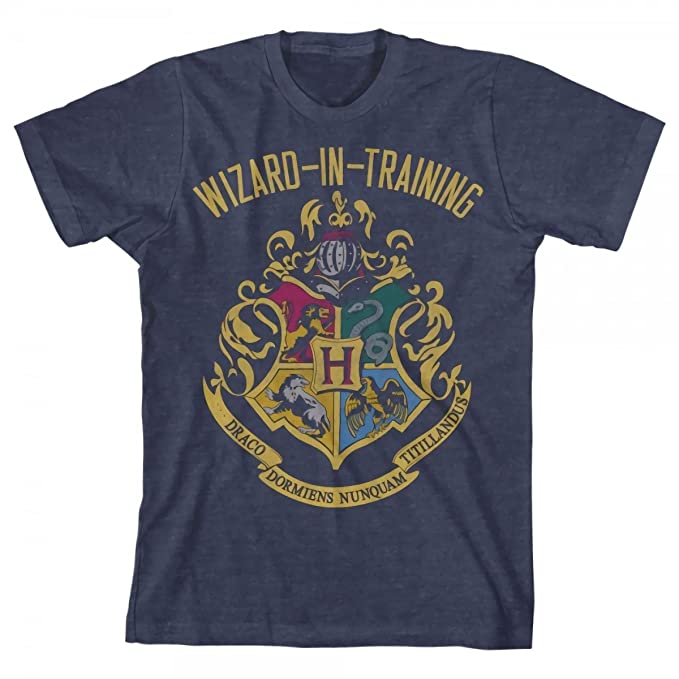 Harry Potter Big Boys Wizard in Training Navy Heather T-Shirt (X-Small