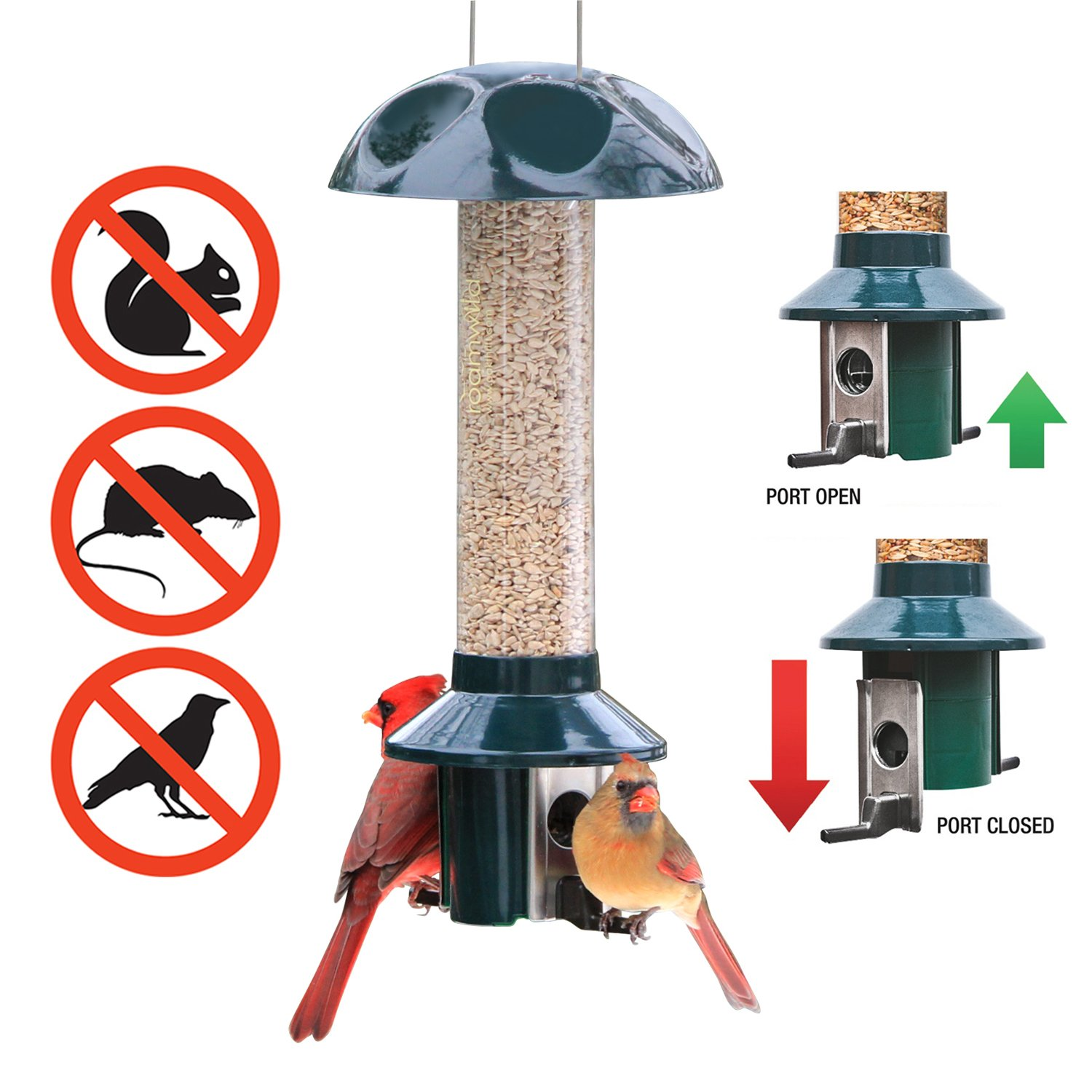 Roamwild PestOff Squirrel Proof Bird Feeder Mixed Seed Sunflower Heart Version by Roamwild