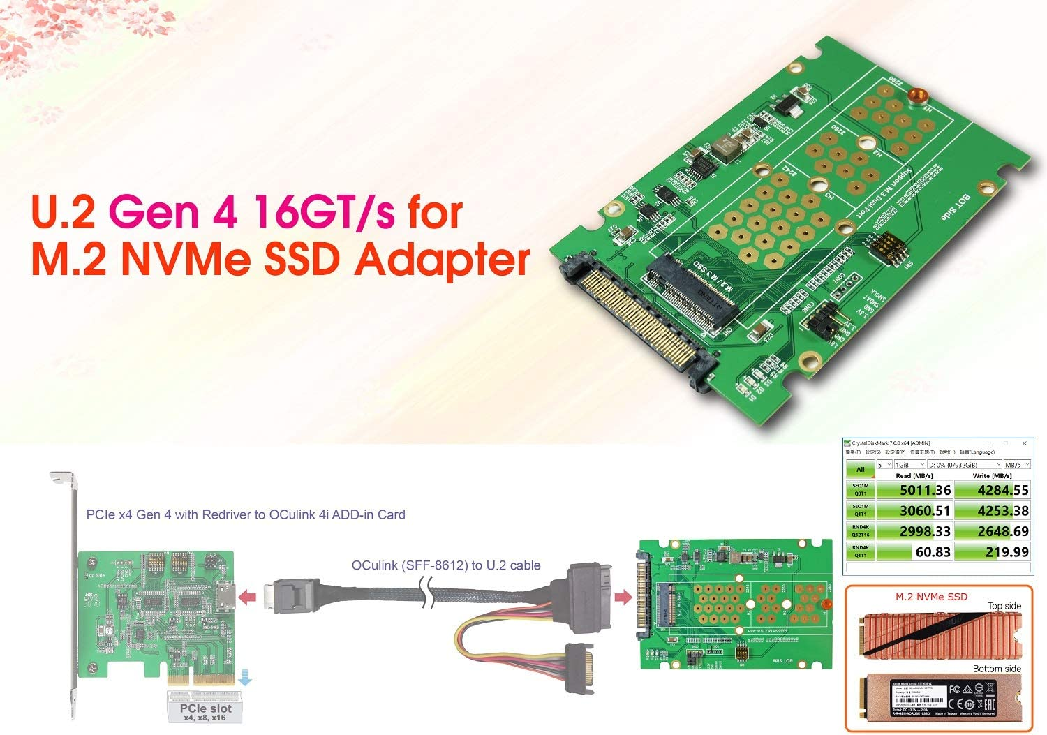U.2 to M.2 NVMe SSD for PCIe Gen4 Adapter
