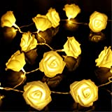 KINGSO 20 LED Battery Operated Rose Flower String Lights Wedding Garden Christmas Decor (Warm White)