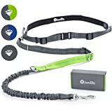 Treat4Pet Premium Hands Free Dog Leash for Running, Comfortable Waistbelt & Adjustable Length! Reflective stitching & Control Handle. Retractable Shock Absorbing Bungee for up to 150 lbs Large Dogs.