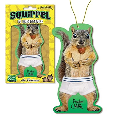 Accoutrements Squirrel in Underpants Deluxe Air Freshener: Automotive