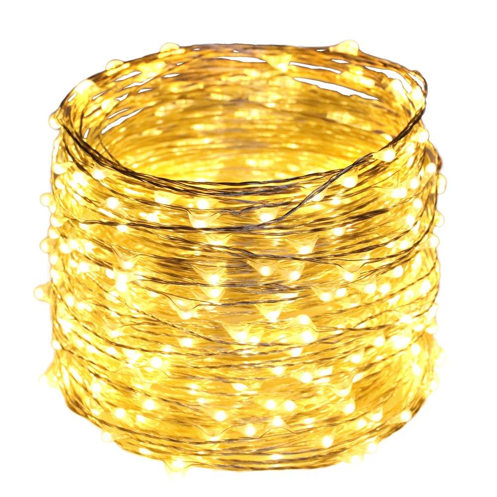ER CHEN(TM) 165ft Led String Lights,500 Led Starry Lights on 50M Silver Coating Copper Wire String Lights + 12V DC Power Adapter(Warm White)