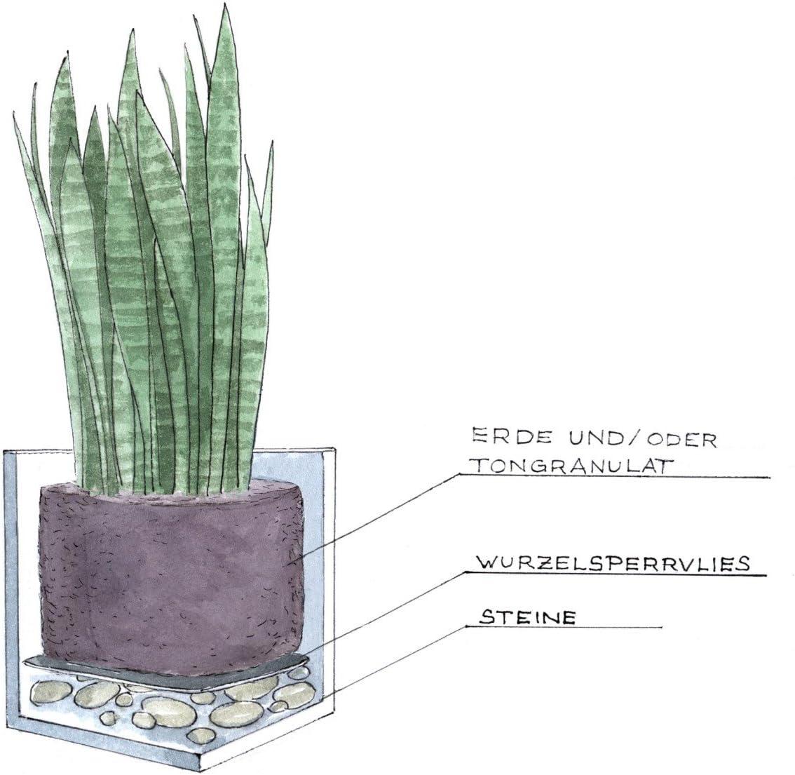 resistente al gelo e alla radiazione UV Fioriere DECORAS colori: antracite opaco diverse misure appropriato per l/'uso interno ed esterno vasi in plastica