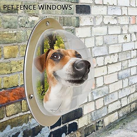 Aolvo Porthole para perro, acrílico duradero, para mascotas, gatos, ventanas, ventanas, tamaño XL, para perro, ...
