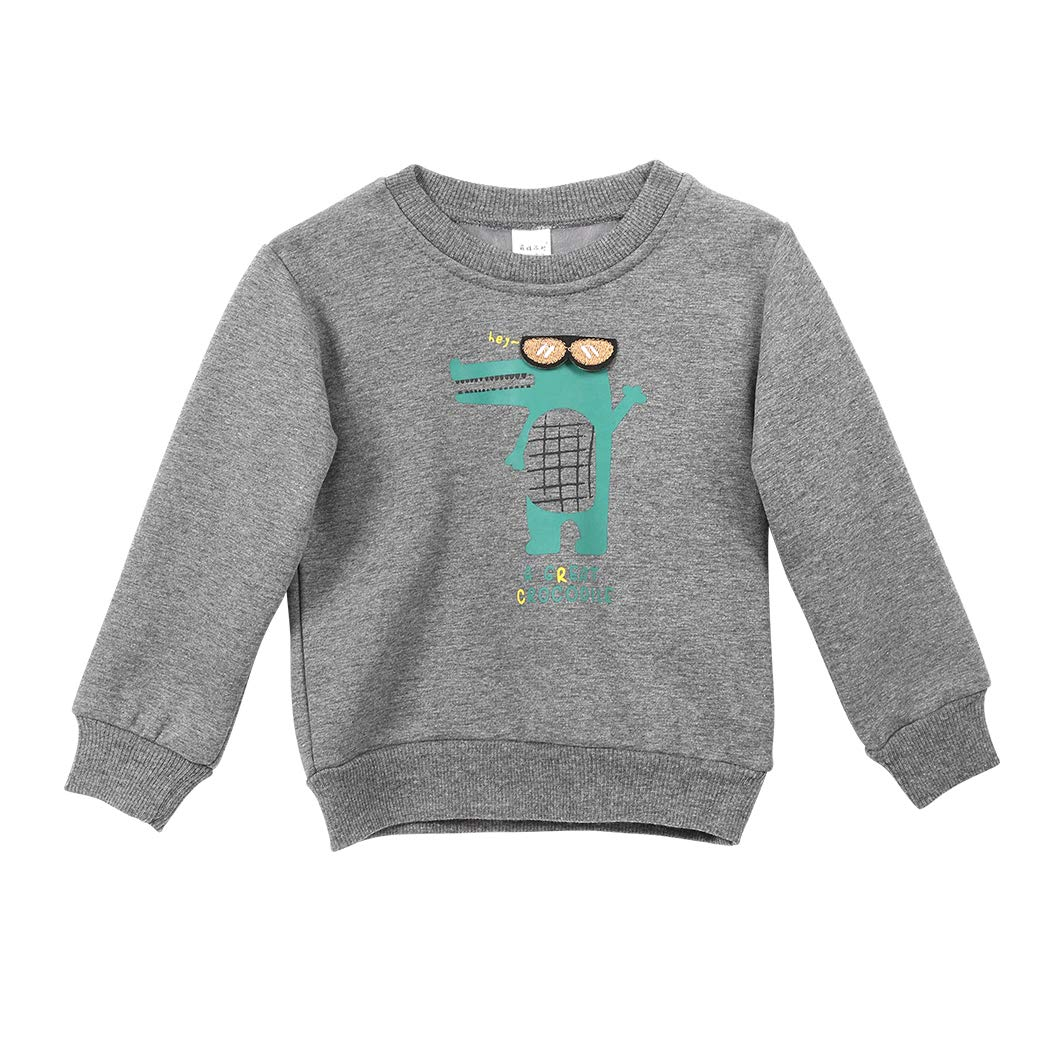 MIOIM Little Boys Cotton Cute Crew Neck Long Sleeve Shirts Fleece Pullover