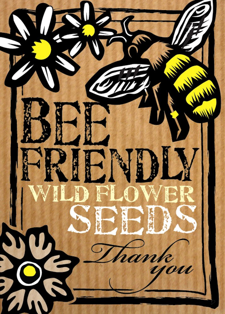 Bee-Friendly'Thank You' Wild Flower Seeds - Beautiful Flowers in Many Colours, Great Gardener Gift. Over 1000 Seeds Per Packet! RHS Perfect for Pollinators Certified Mix. Friendly Seed Company