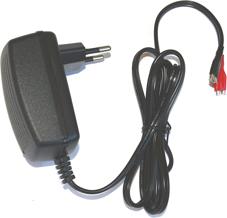 DSK 6877 BC-12500 - Cargador 12V batería Plomo automático, Negro