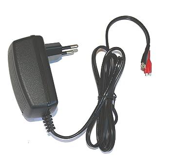 DSK 6877 BC-12500 - Cargador 12V batería Plomo automático ...