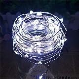 B2ocled LEDイルミネーションライト 防水 10m 電源アダプタ付け 高輝度 省電力 長寿命 ストリングライト ジュエリーライト フェアリーライト 飾り( ホワイト 昼白色)