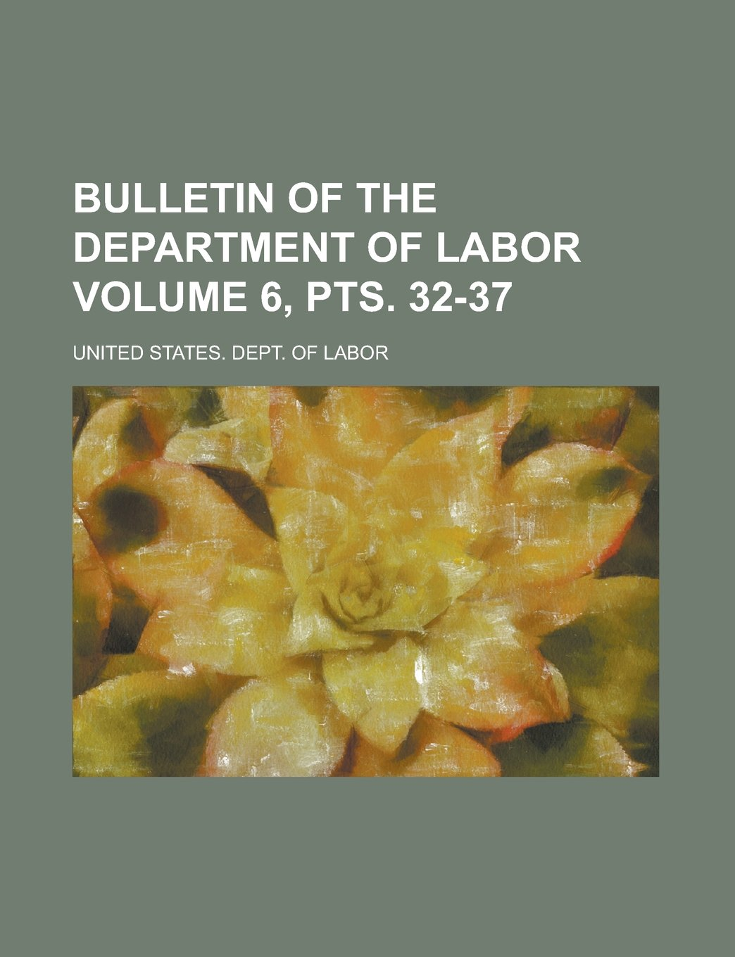 Bulletin of the Department of Labor Volume 6, pts. 32-37 PDF