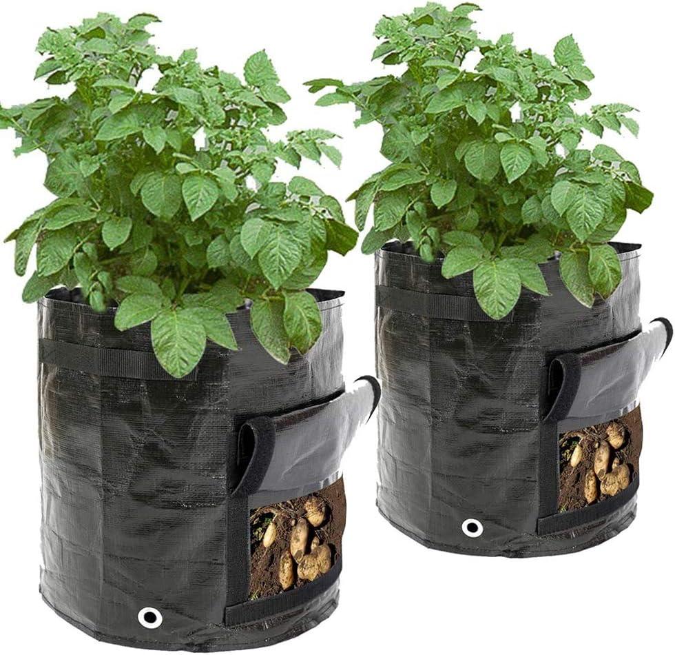 2 X Sac de Plantation Grand, 50 L, 34 X 35 cm, Sacs de Plantation Pour Pommes De Terre, Carottes, Fraises Fraise Grow Bag