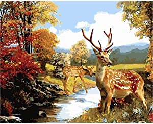 DUANGONGZI DIY Digital Oil Painting Sika Deer Paint by Numbers Painting Kit for Kids Adults Beginner Children Drawing -with Frame-40X50CM