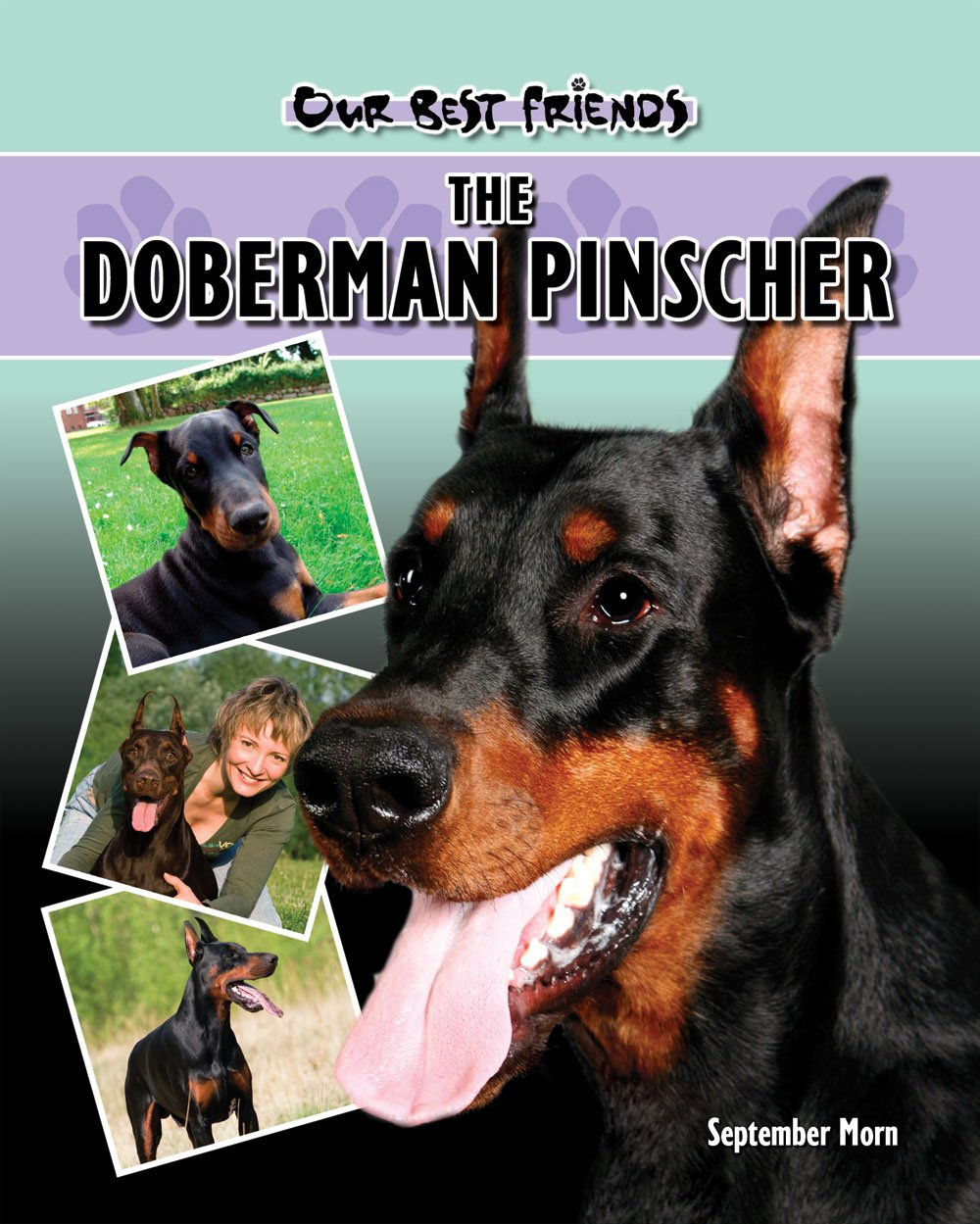 Doberman (Our Best Friends)